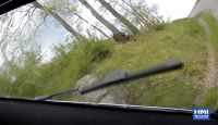 Crash Corrado Fontana Hyundai i20 WRC Rally del Taro
